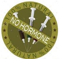 Hormone Free.jpg