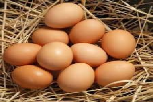 Kadaknath Eggs