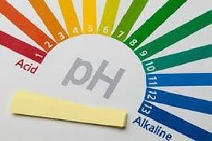pH Testing Kit.jpg