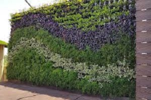 Vertical Garden 3.jpg
